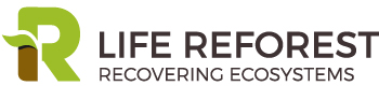 Logotipo Life Reforest